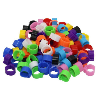 200xRandom Animal Colorful Poultry Leg Band Foot Rings Clip Parrot Pigeon Pack