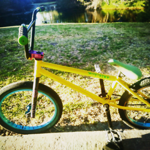 Fit bike new paint she is bright need it gone