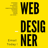 Web Designer Professional and Clean Website That Fits any Budget
