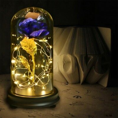 - 24K Gold Plating Rose Flower in a Glass With LED Light Dome Valentine's Day Gift