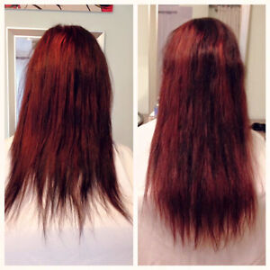 $295 Extensions, come in and transform you hair for the season Peterborough Peterborough Area image 7