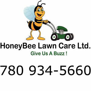 HoneyBee Lawn Care-spring cleanup/lawn cutting/lawn mowing/sod