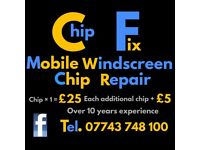 Windscreen Chip Repair - Only £25- Over 10 Years Experience