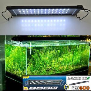 Aquarieneco 40cm Aquarium Fish Tank Over Head Lamp Led