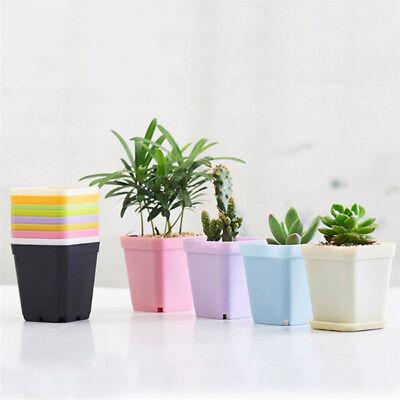 10X Mini Succulent Planters Small Square Pots Plastic Flower Pots Pallet And Pot - Mini Pots