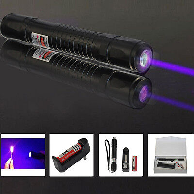 Purple Laser Pointer Burning Light Beam Pen Battery Charger w/US Wall Charger