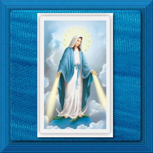 HAIL MARY Holy Prayer Card LAMINATED Our Lady of Grace Wallet Size Catholic