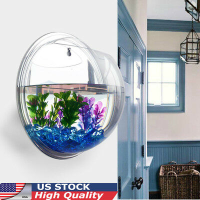Aquarien Hanging Terrarium Goldfish Betta Wall Mounted Fishes Tank Bowl Bubble