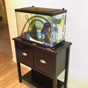 10 Galon fish tank with stand
