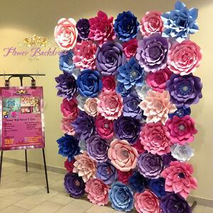 Flower backdrops Oakville / Halton Region Toronto (GTA) image 6