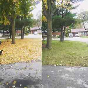Fall yard clean up & eavestrough cleaning London Ontario image 1