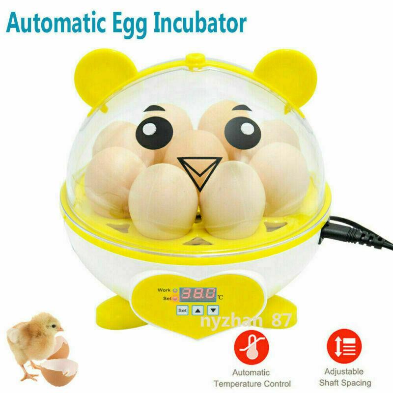 9 Eggs Mini Incubator Digital Brooder Temperature Hatching Poultry Hatcher