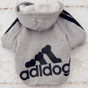 Brand New Condition Dog Jacket London Ontario image 1