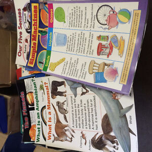 Elementary Primary Teacher Resources and Materials Windsor Region Ontario image 2