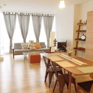 Roccabella full furnished 2 BR new condo in downtown Montreal.