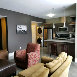 Upscale I bedroom with den suite for rent