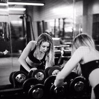 Online Personal Training/Coaching