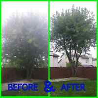 TREE CUTTING/TRIMMING/HAULING SERVICE CALL/TEXT 204-451-7751