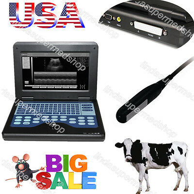 Veterinary Portable Ultrasound Scanner Cowhorseanimal7.5m Rectal Linear Probe