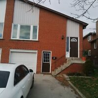 Beautiful Upper Apartment in Brampton!