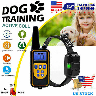 Waterproof 875 Yard Pet Dog Training Collar Electric Shock Rechargeable Remote Dog Shock Collar Remote