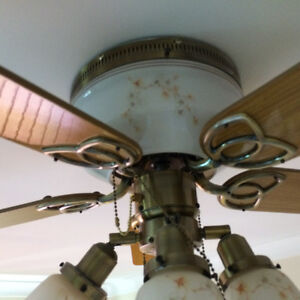 LIKE NEW FAN WITH BASE LIGHT