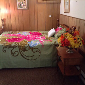 LARGE ROOM FOR FEMALE (Professional/matured student)