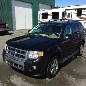 2010 Ford Escape LIMITED EDITION SUV, Crossover St. John's Newfoundland image 3