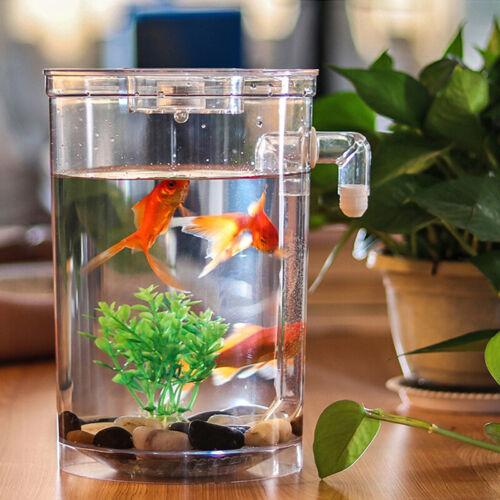 Creative Ecology Mini LED Fish Tank Luminous Glass Tank Aquarium Fish Tank 1