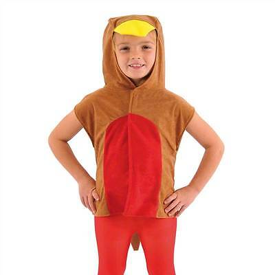 Robin Red Breast Bird Costume For Kids One Size, Fancy Dress, Charlie - Robin Bird Kostüm