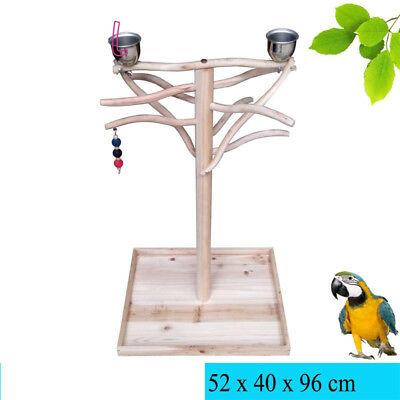 Parrot Tree Bird Stand Toy Parrot Wood Stand Bird Stand Tree Toy Play Gym Center