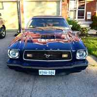 Classic 1978 Ford Mustang 6000 or BO or trade