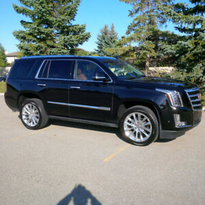 Cadillac Escalade Premium Luxury SUV, only 11,000 KM
