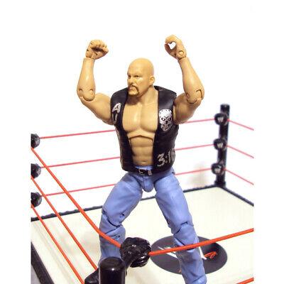 WWE Defining Moments Stone Cold Steve Austin Best Of Attitude Era Action