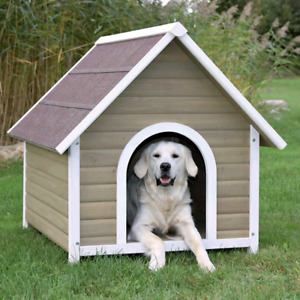 Looking for dog houses