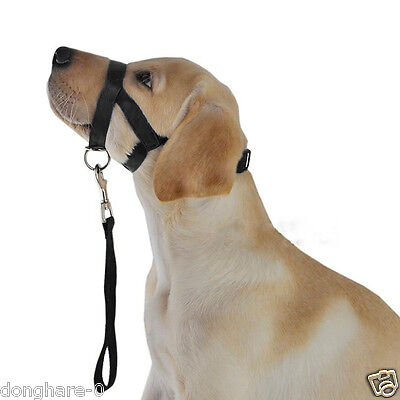Gentle Halter Leash Gentle Leader Head Collar No Pull for Training Dog Muzzle