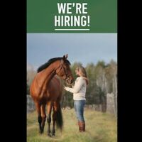 Part Time Sales Assistant Required
