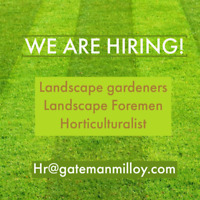 HIRING - Landscape crew members and forepersons.