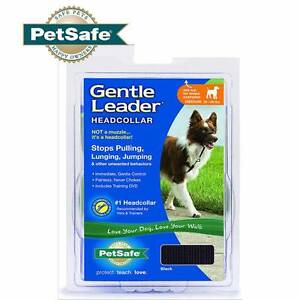 Genuine perimer gentle leader stop pulling leash lunging jumper Welshpool Canning Area Preview