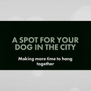 Park Your Dog with The Dog Hugger, Nicole Schuchard