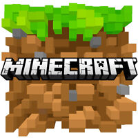 Minecraft I.T. Expert wanted for summer
