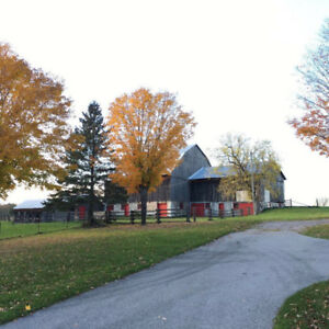 PARKING AVAILABLE IN fenelon fall  (indoor and outdoor)