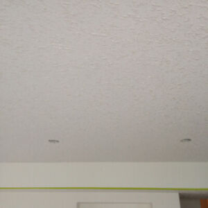 Ceiling TEXTURING-Best California deal for supply/install Ceilin