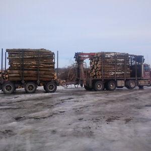 Log length firewood Cornwall Ontario image 1