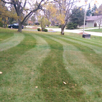 GRASS CUTTING & INTERLOCKING services