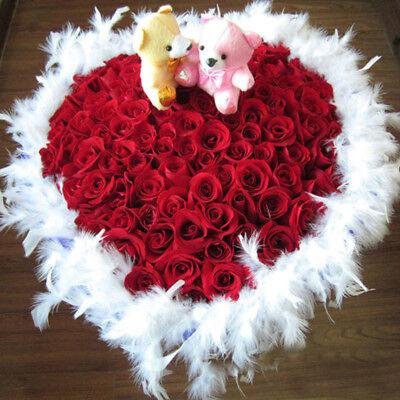 2m Valentines Day Luxury White Feather Boa Xmas Tree Home Party Decor Wreaths (White Boa Feathers)