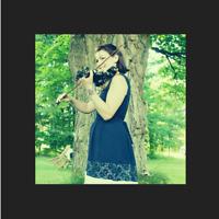Cours de violon pour tous/Violin lessons for all