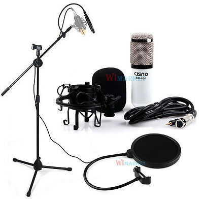 Professional Condenser Microphone Mic Studio Sound Recording W/Filter Boom Stand