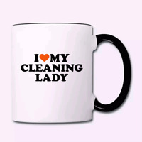 Professional Cleaning Without The Professional Prices!