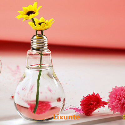 Small Clear Light Bulb Stand Glass Plant Flower Vase Hydroponic Container Bottle